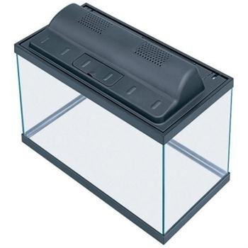 A guide to finding the best 10 gallon fish tank for you for Fish tank and stand combo