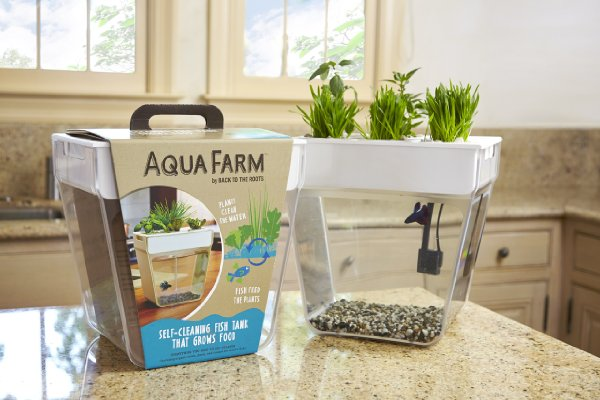 Review Of The Back To The Roots Water Garden Fish Tank