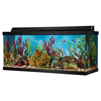 75 gallon hooded fish tank