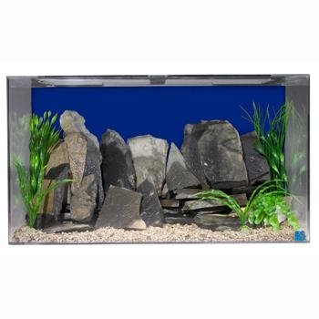 Seaclear 50 Gallon Acrylic Aquarium Review Aquariphiles
